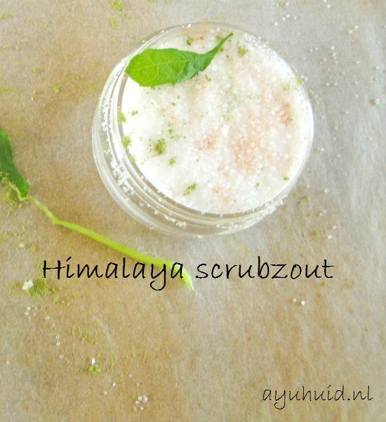 Himalaya scrubzout