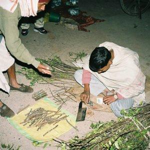 neem ayurveda